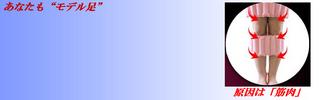 エアレツグベルト ブログバナー 2